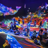 Colourful light projections of animals and plants in a roomful of people