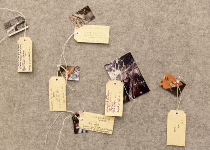 polaroids and object tags pinned to a wall
