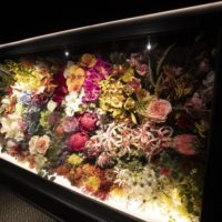 Cabinet display of plastic flowers.