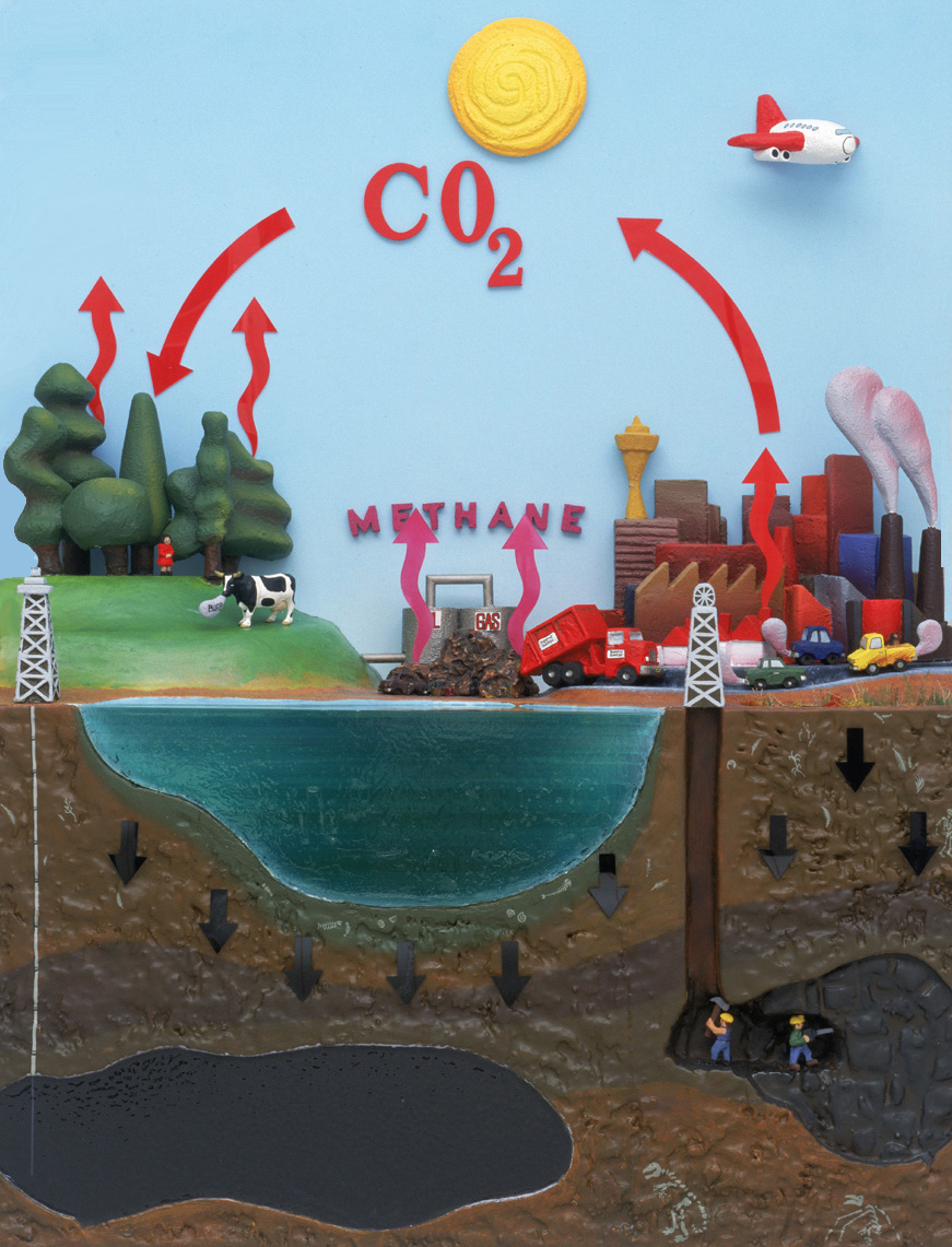 Diagram cartoon showing the cycle of carbon in our environment