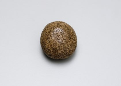Round smooth brown speckled object against a white background