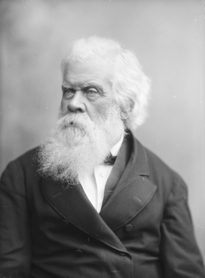 Portrait of Sir Henry Parkes, Sydney, Australia, 1880-1896, Powerhouse Museum, 85/1286-481
