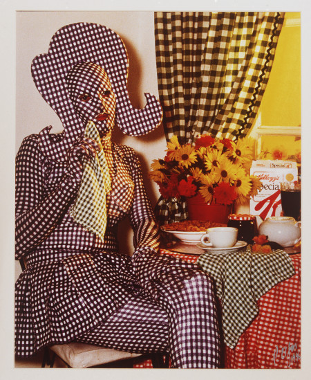 "Photograph of Brenton in ""Gingham"""