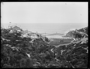 Photograph of Wonderland City, Tamarama