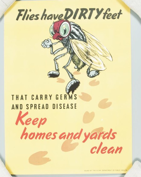 Poster, 'Flies have dirty feet'