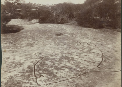 Photograph, aboriginal carvings, Cowan's Creek, Bantry Bay, Mossman's Bay 1890