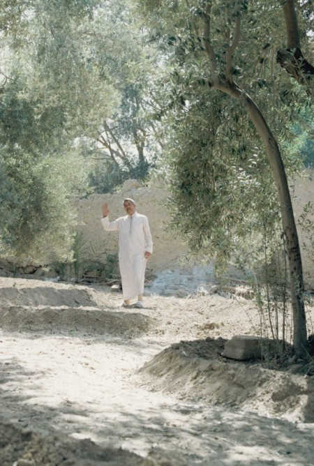 Farmer in his date grove, Palmyra, photo by Paul Donnelly