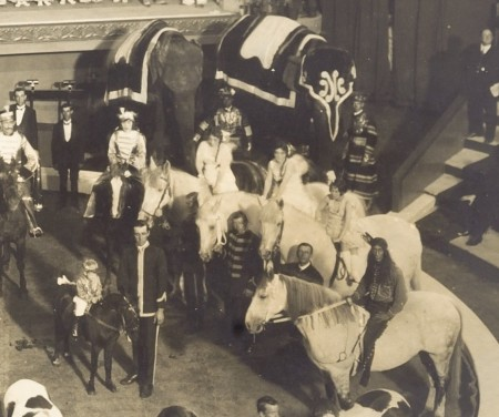 Photograph of Wirth's Circus enlarged section of horses