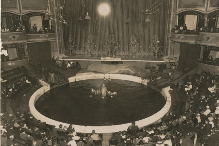 Photograph of Wirth's Circus ring at the Hippodrome