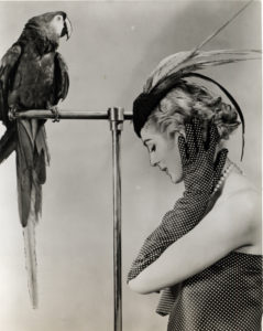 Photograph of Carmen Dell'Orefice modelling Birds of a Feather