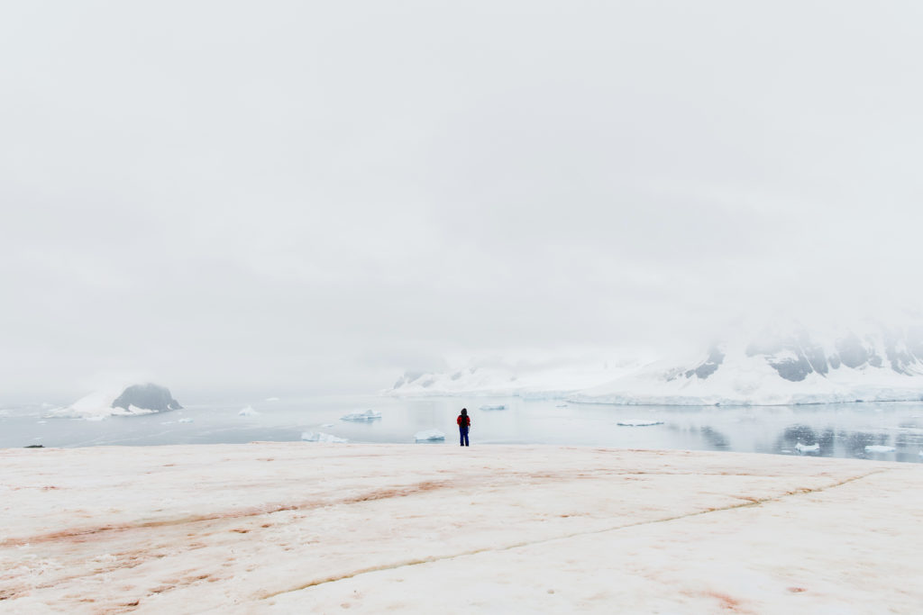 A single person stands at the edge of a plateau, some distance from the photographer. The foreground shows snow marked by pink algae growth. The background shows the ocean with icebergs floating in the water and snow covered mountains covered in low hanging cloud.