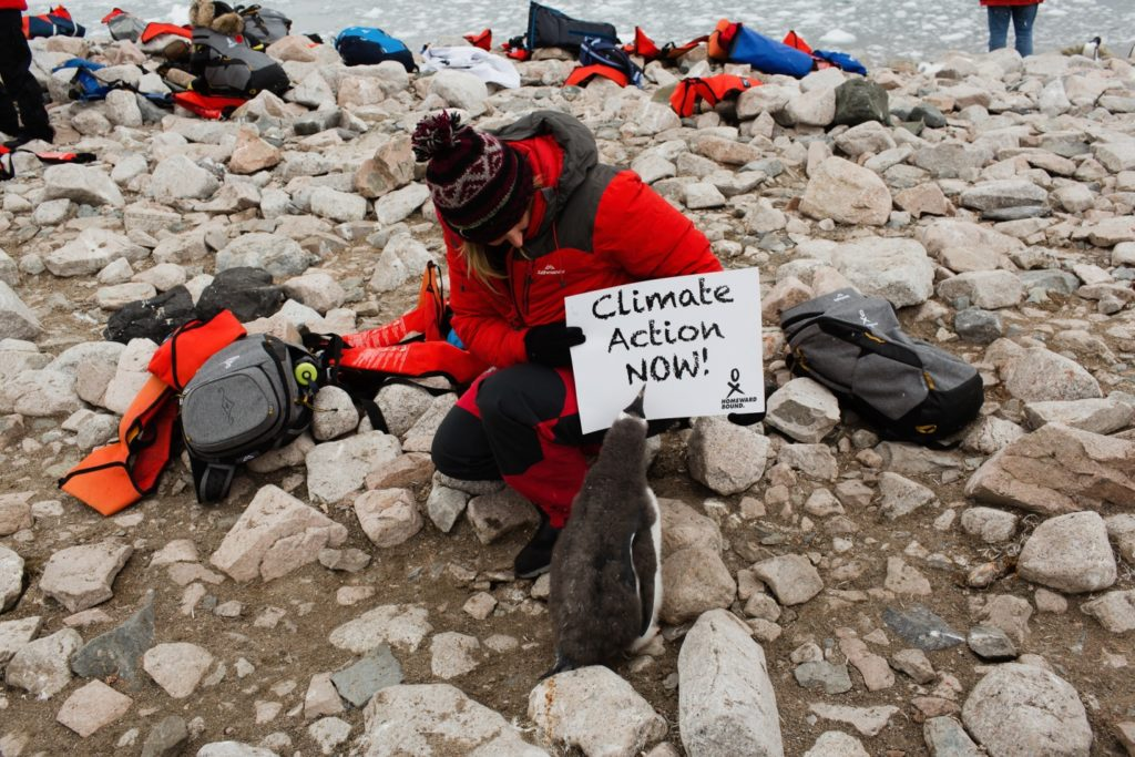 Nina Earl crouches on the rocky ground holding a sign that reads Climate Action Now. Laying on the ground around her are bags and jackets from other people. Standing in front of her looking at the sign is a penguin chick. It has fluffy grey feathers covering it's back.