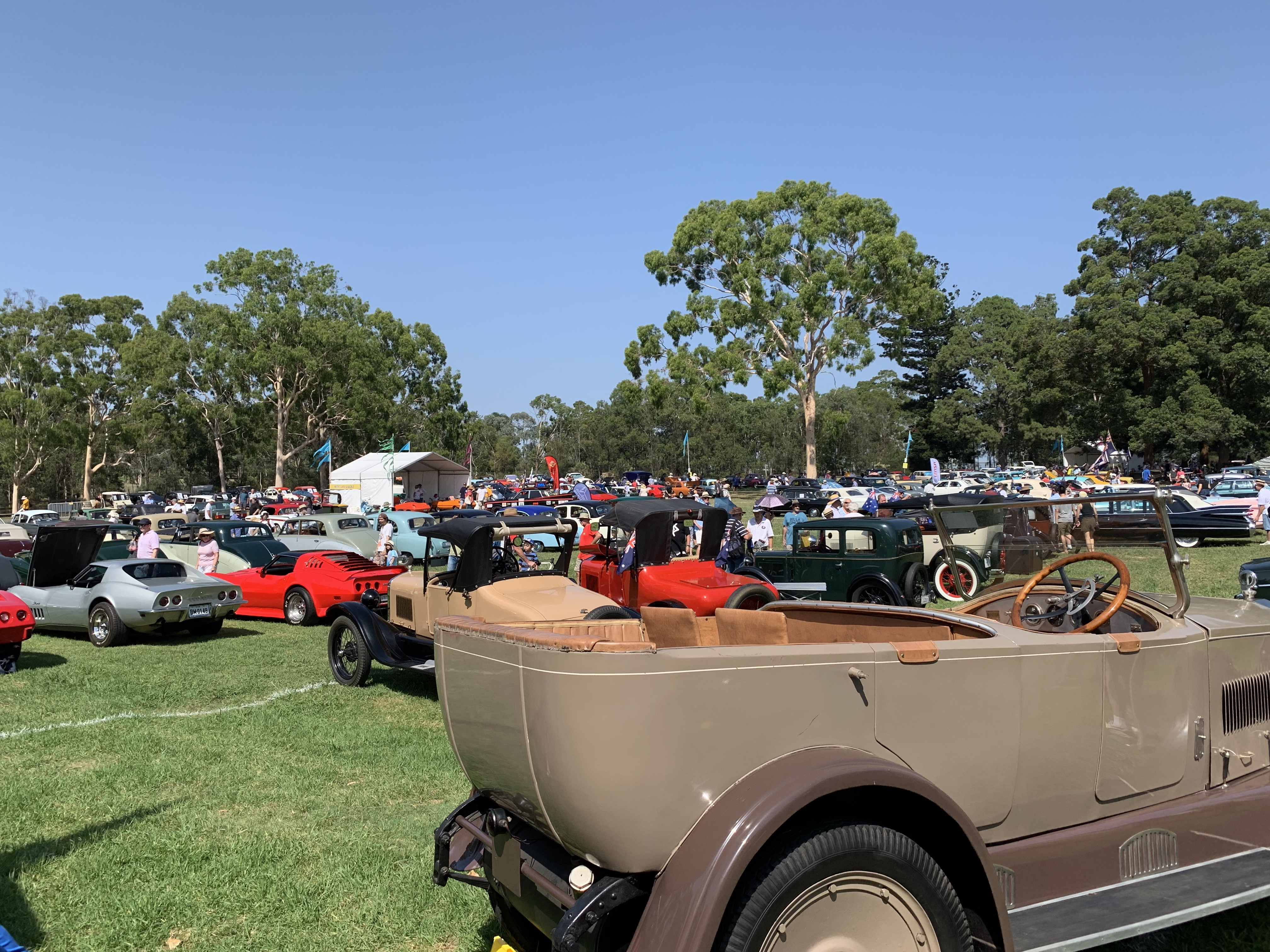 A light and dark brown classic car is at the bottom right hand side of the photo. Behind it are rows of multicoloured cars parked on a grass field. Tall green dress are in the background.