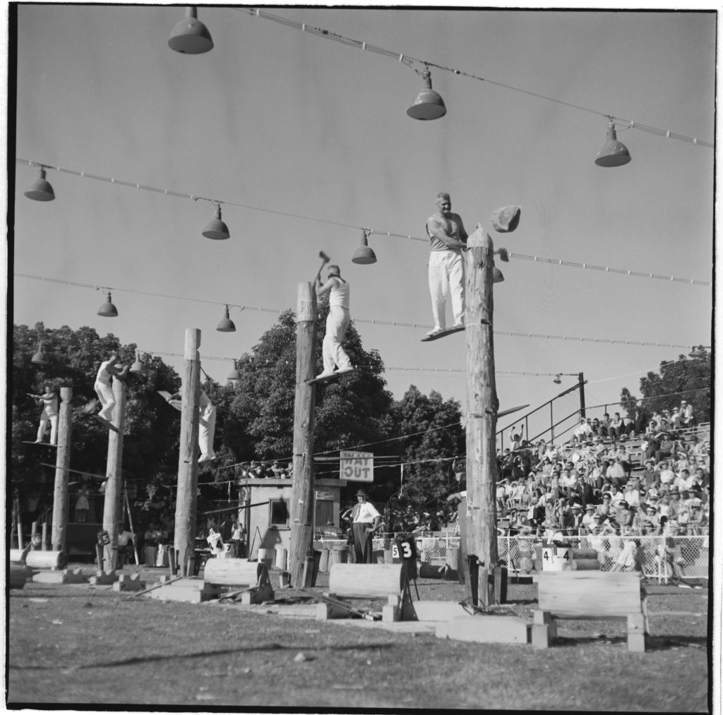 Photograph showing 5 men, each standing on a board, each chopping down a vertical log at the Royal Easter Show. An official judge looks on and spectators sit watching in a stepped grandstand.