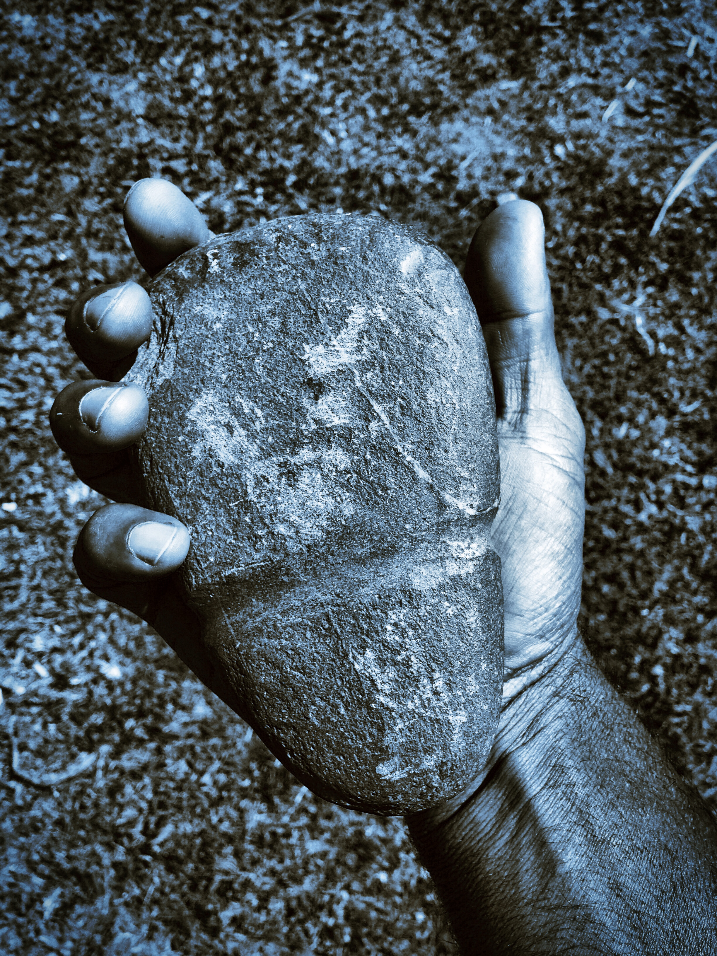 a mans hand holds an indigenous Australian axe head. The axe head is worn wear it was tied to a handle and has chips in the surface around the blade end.