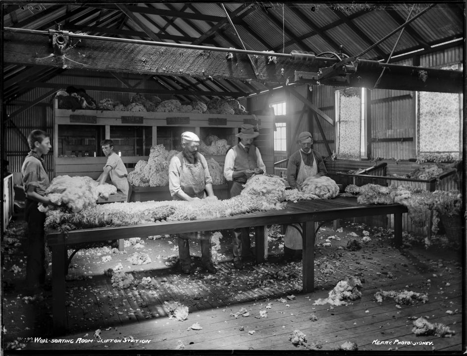 B & W photo showing men in a large shed sorting wool.